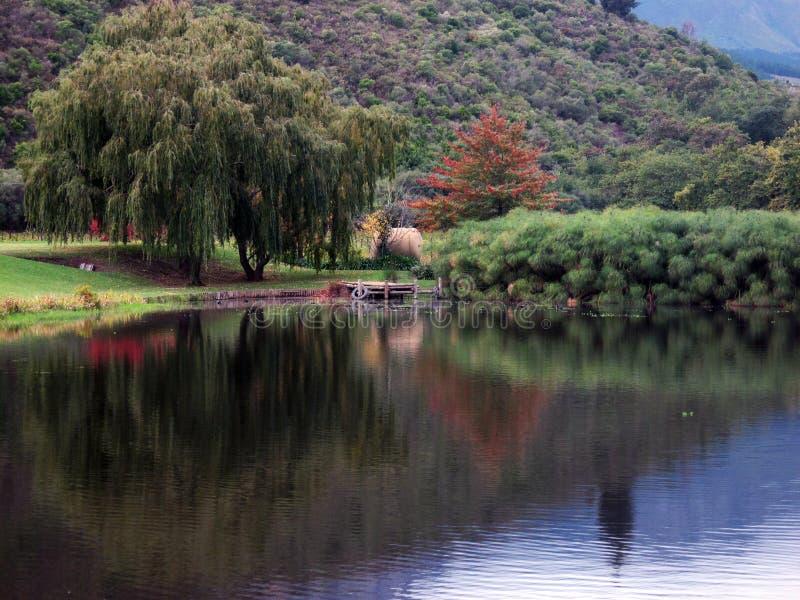 Λίμνη στο Winelands στοκ φωτογραφία με δικαίωμα ελεύθερης χρήσης