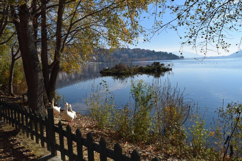 Λίμνη της άποψης της Καστοριάς Ελλάδα στοκ φωτογραφίες