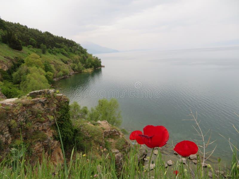 Λίμνη της Οχρίδας - βόρεια Μακεδονία στοκ φωτογραφία με δικαίωμα ελεύθερης χρήσης