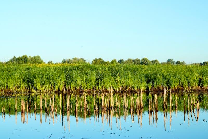 Λίμνη τοπίων στοκ εικόνα με δικαίωμα ελεύθερης χρήσης