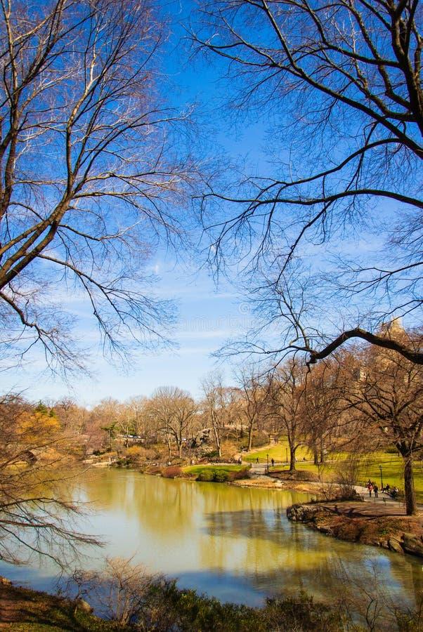 Λίμνη του Central Park στοκ φωτογραφία με δικαίωμα ελεύθερης χρήσης