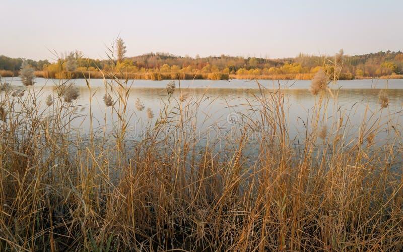 Λίμνη το φθινόπωρο με το χρώμα 2 φθινοπώρου στοκ εικόνα