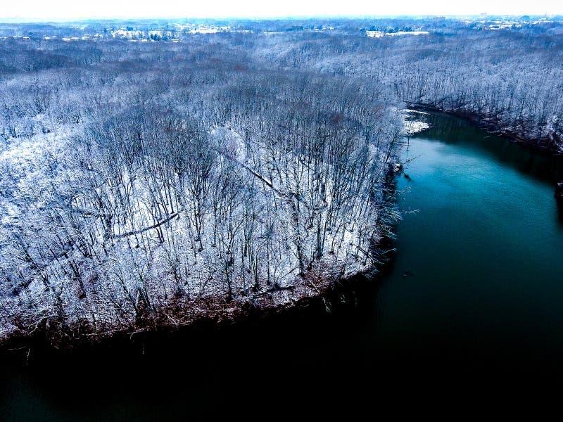 Λίμνη το χειμώνα με τα χιονώδη ξύλα στοκ εικόνες με δικαίωμα ελεύθερης χρήσης