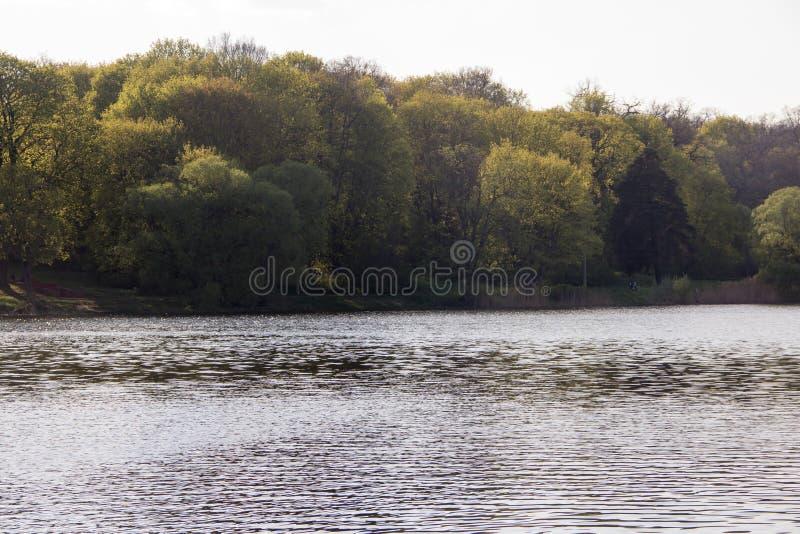 Λίμνη στοκ εικόνες