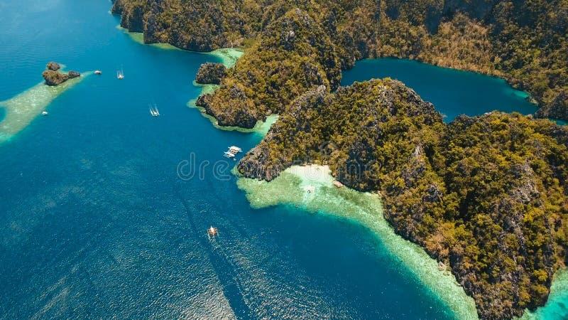 Λίμνη Barracuda σε ένα τροπικό νησί, Φιλιππίνες, Coron, Palawan βουνών στοκ φωτογραφίες με δικαίωμα ελεύθερης χρήσης