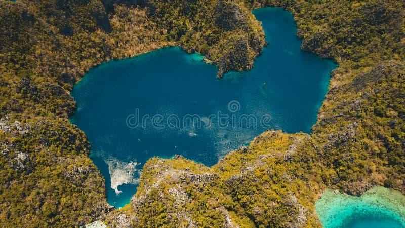 Λίμνη Barracuda σε ένα τροπικό νησί, Φιλιππίνες, Coron, Palawan βουνών στοκ εικόνες
