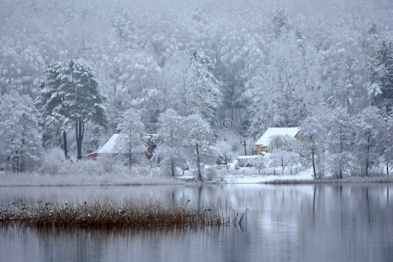 Λίμνη Bijote, περιφερειακό πάρκο Kurtuvenai στοκ φωτογραφίες