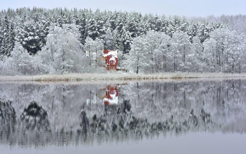 Λίμνη Bijote, περιφερειακό πάρκο Kurtuvenai στοκ εικόνες