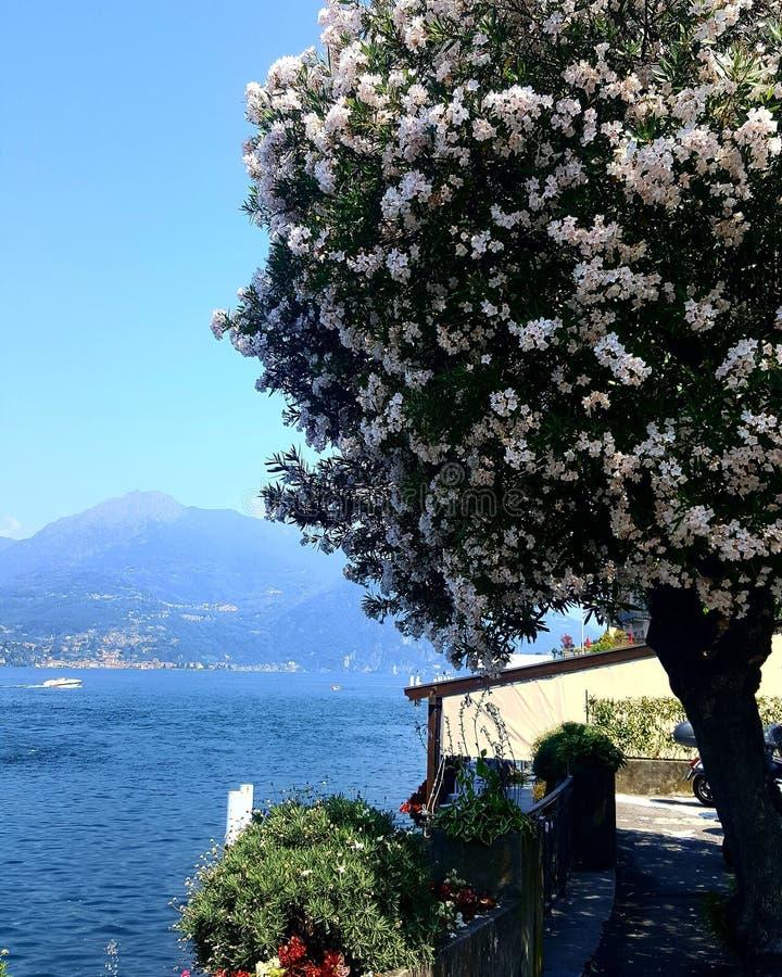 Λίμνη Como στοκ φωτογραφίες με δικαίωμα ελεύθερης χρήσης