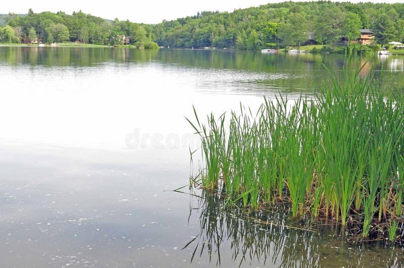Λίμνη Garfield, Monterey, μΑ Berkshires στοκ εικόνες με δικαίωμα ελεύθερης χρήσης
