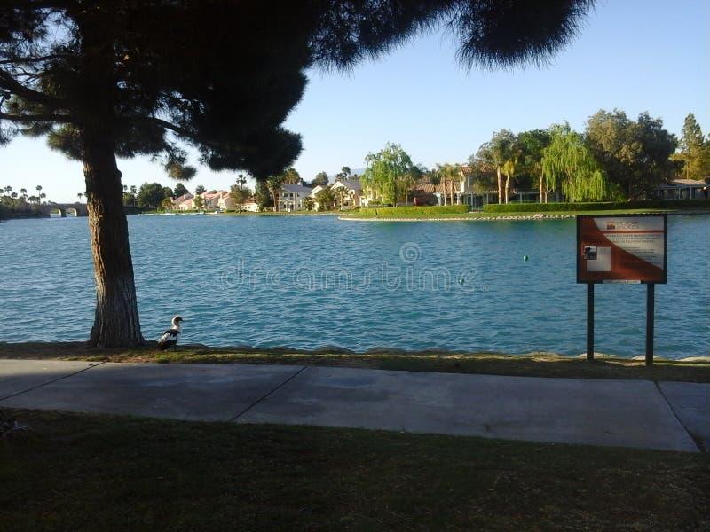 Λίμνη Jacqueline στοκ φωτογραφίες με δικαίωμα ελεύθερης χρήσης