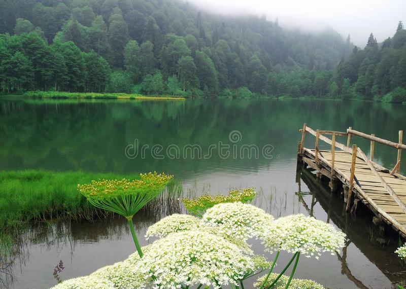 Λίμνη Karagöl στοκ φωτογραφία με δικαίωμα ελεύθερης χρήσης