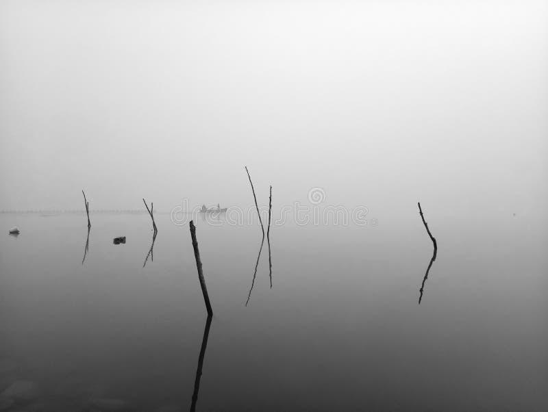 10 λίμνη Kerkini στοκ εικόνες με δικαίωμα ελεύθερης χρήσης