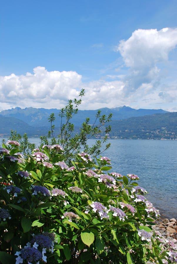 λίμνη maggiore στοκ εικόνες