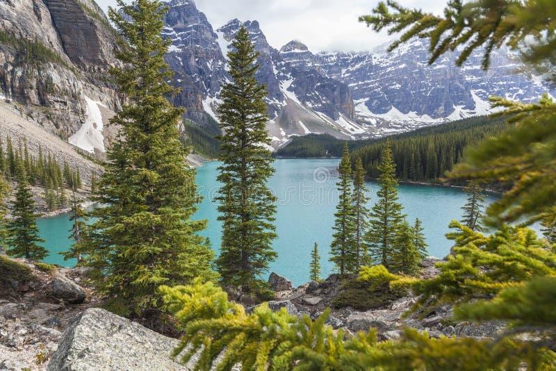 Λίμνη Moraine, εθνικό πάρκο Banff, Αλμπέρτα, Καναδάς στοκ φωτογραφία