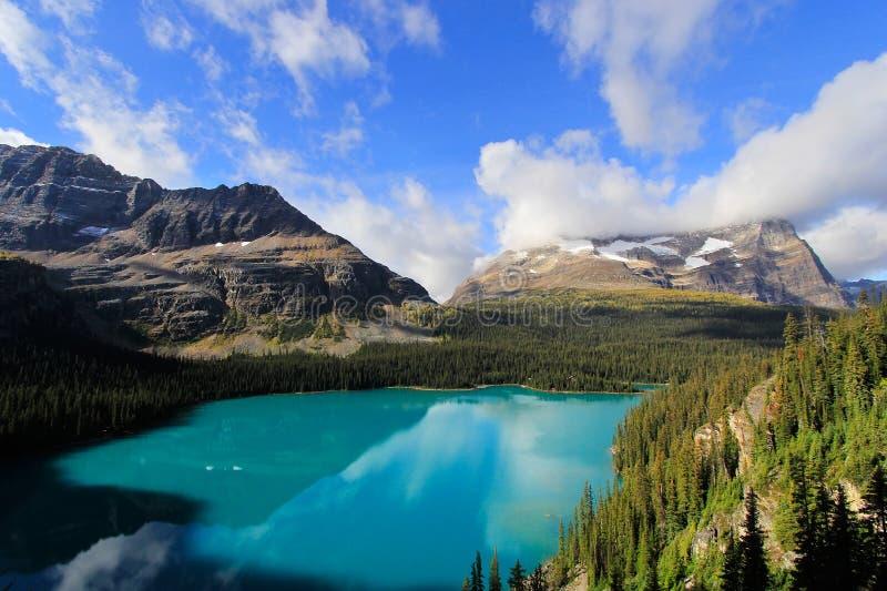 Λίμνη O'Hara, εθνικό πάρκο Yoho, Καναδάς στοκ εικόνες με δικαίωμα ελεύθερης χρήσης