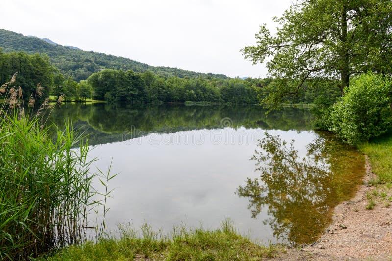 Λίμνη Origlio κοντά στο Λουγκάνο στοκ φωτογραφία