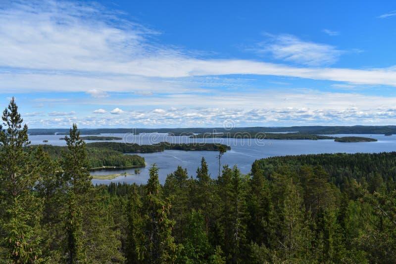 Λίμνη Päijänne πλαισίου δέντρων και νησιών πεύκων στοκ εικόνες με δικαίωμα ελεύθερης χρήσης