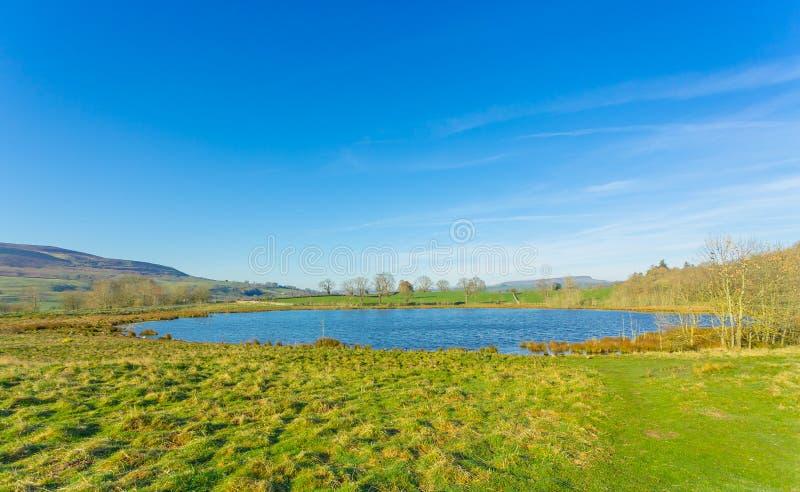 Λίμνη Pinker στην άνοιξη, Middleham, βόρειο Γιορκσάιρ στοκ φωτογραφία με δικαίωμα ελεύθερης χρήσης