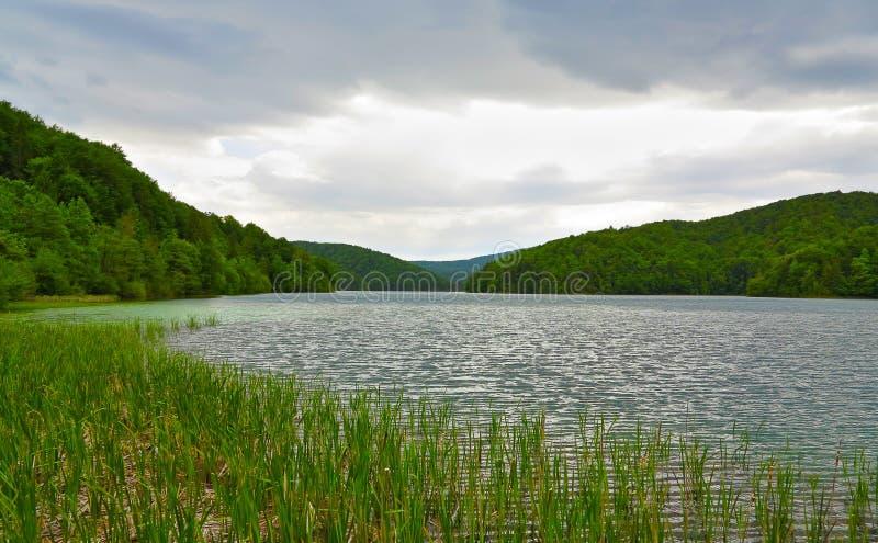 Λίμνη Plitvice στο εθνικό πάρκο, Κροατία στοκ εικόνα
