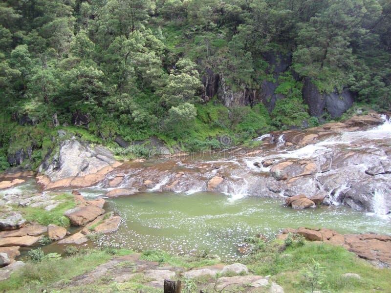 Λίμνη Pykara με το δάσος στοκ φωτογραφία με δικαίωμα ελεύθερης χρήσης