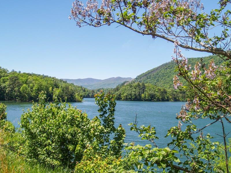 Λίμνη Santeetlah στο μεγάλο καπνώές εθνικό πάρκο βουνών στοκ φωτογραφία με δικαίωμα ελεύθερης χρήσης