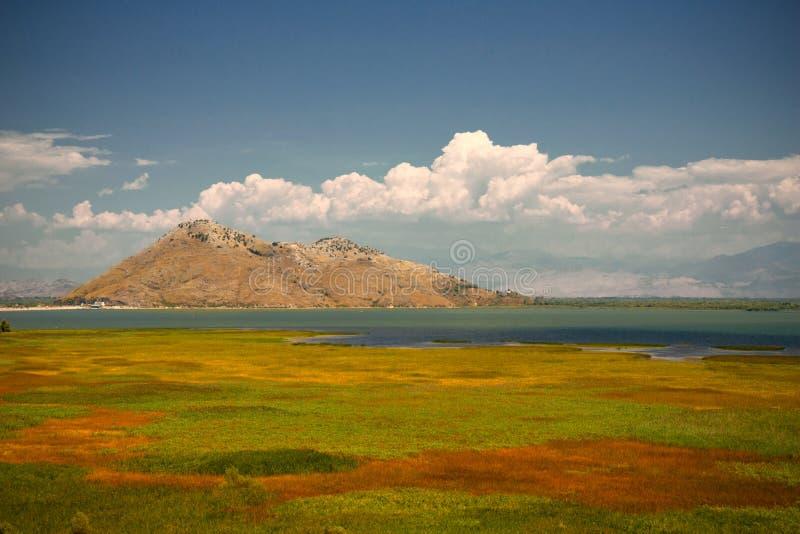 Λίμνη Skadar, Μαυροβούνιο στοκ εικόνα