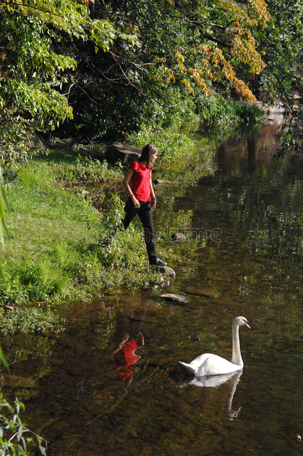 λίμνη Susan τραπεζών στοκ φωτογραφίες με δικαίωμα ελεύθερης χρήσης