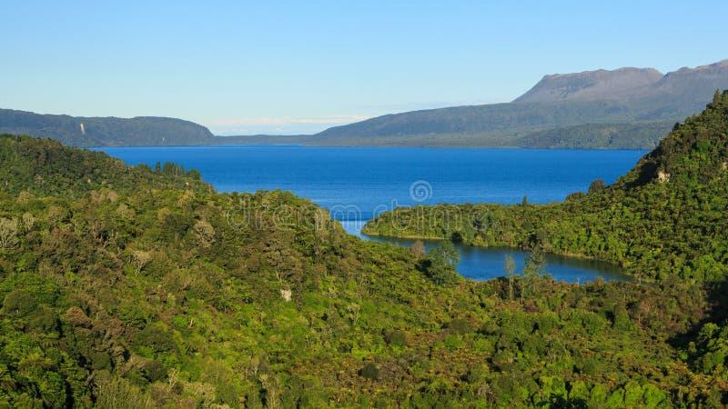 Λίμνη Tarawera, Νέα Ζηλανδία Πανοραμική άποψη της λίμνης και του περιβαλλόντων δάσους και των βουνών στοκ εικόνες