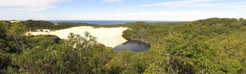 Λίμνη Wabby, νησί Fraser, Queensland, Αυστραλία στοκ εικόνες