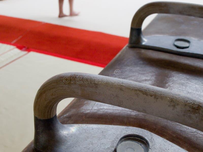 λαβή ξίφους αλόγων στοκ φωτογραφίες