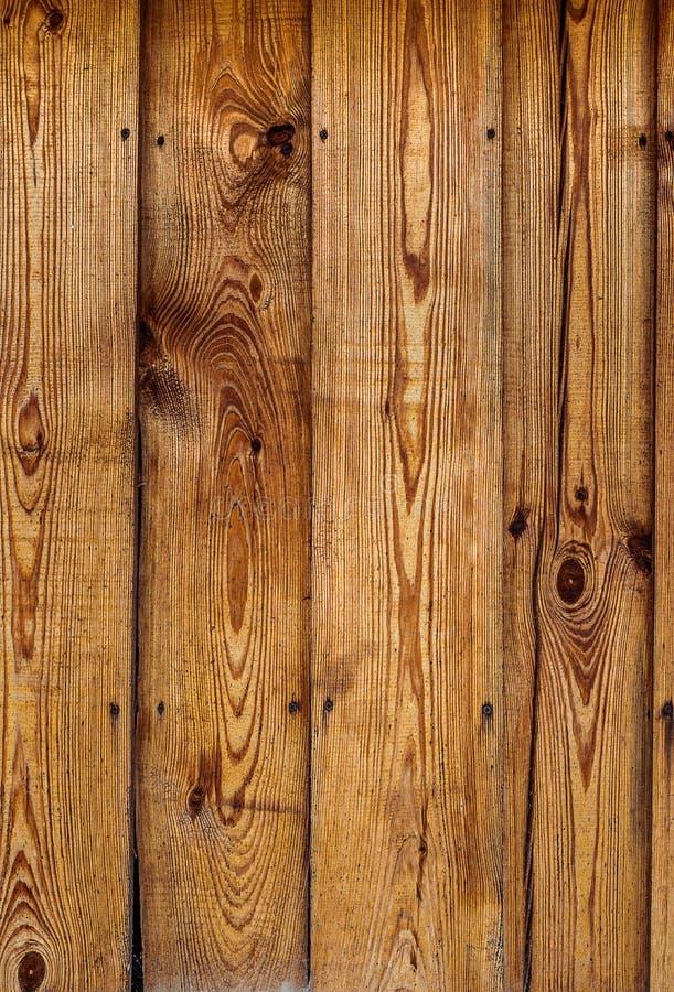 Λαδωμένος φράκτης σανίδων πεύκων Κάθετη ξύλινη σύσταση στοκ εικόνες με δικαίωμα ελεύθερης χρήσης