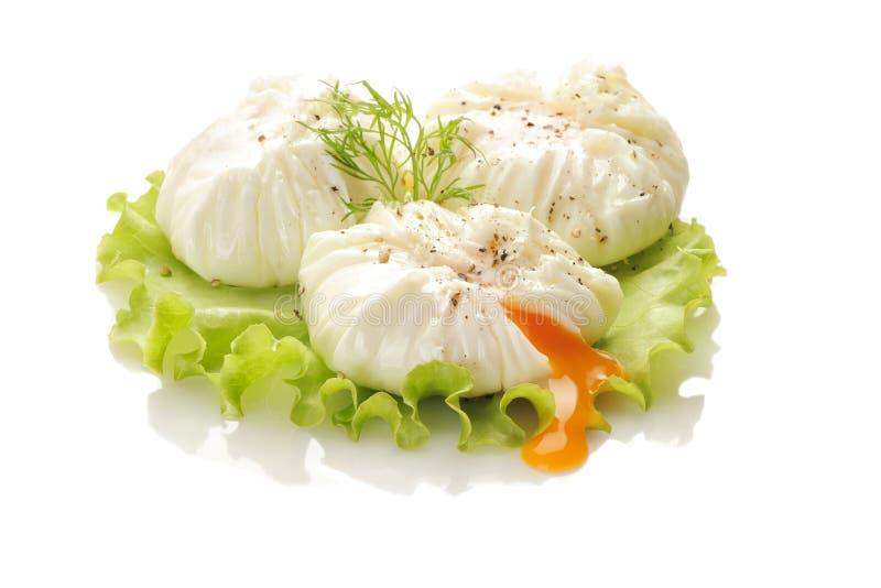 Λαθραίο αυγό στοκ φωτογραφία με δικαίωμα ελεύθερης χρήσης