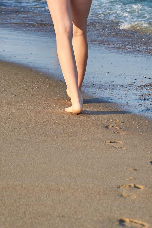 Λαμπρός, τέλειος πληρώνει τη σφραγίδα στην άμμο και η γυναίκα πληρώνει στην παραλία το καλοκαίρι στοκ φωτογραφίες με δικαίωμα ελεύθερης χρήσης