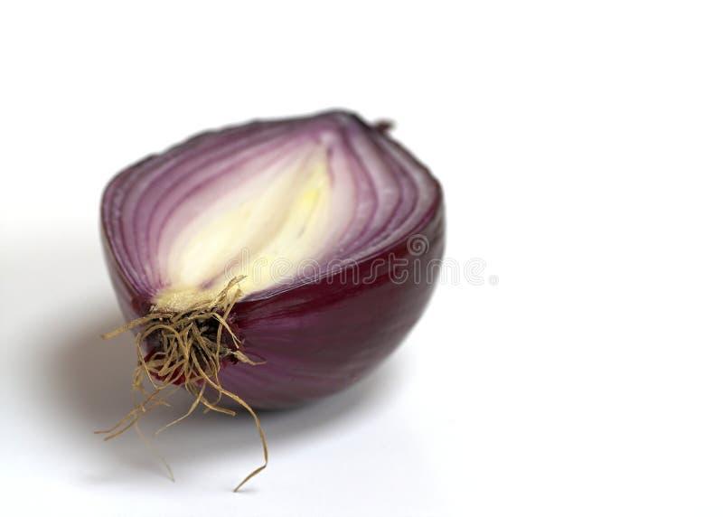 Λαμπρό κόκκινο κρεμμύδι στοκ εικόνα