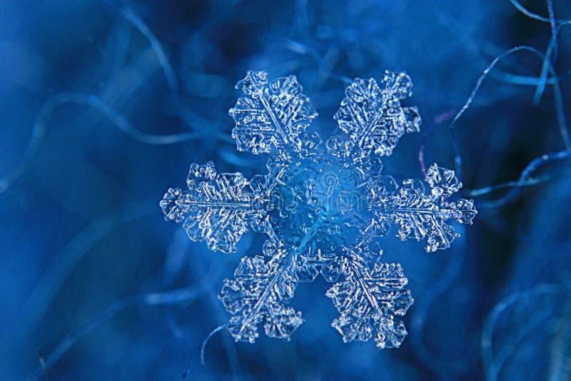 Λαμπρό snowflake κρύσταλλο στοκ φωτογραφία