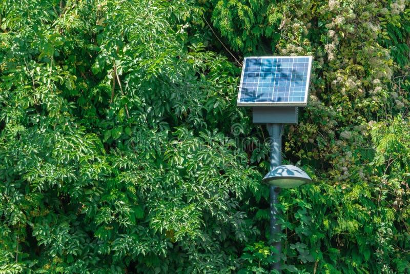 Λαμπτήρας οδών με την ηλιακή μπαταρία στο πάρκο στοκ εικόνα με δικαίωμα ελεύθερης χρήσης
