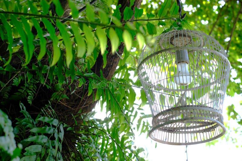 Λαμπτήρας στον κήπο στοκ εικόνα με δικαίωμα ελεύθερης χρήσης