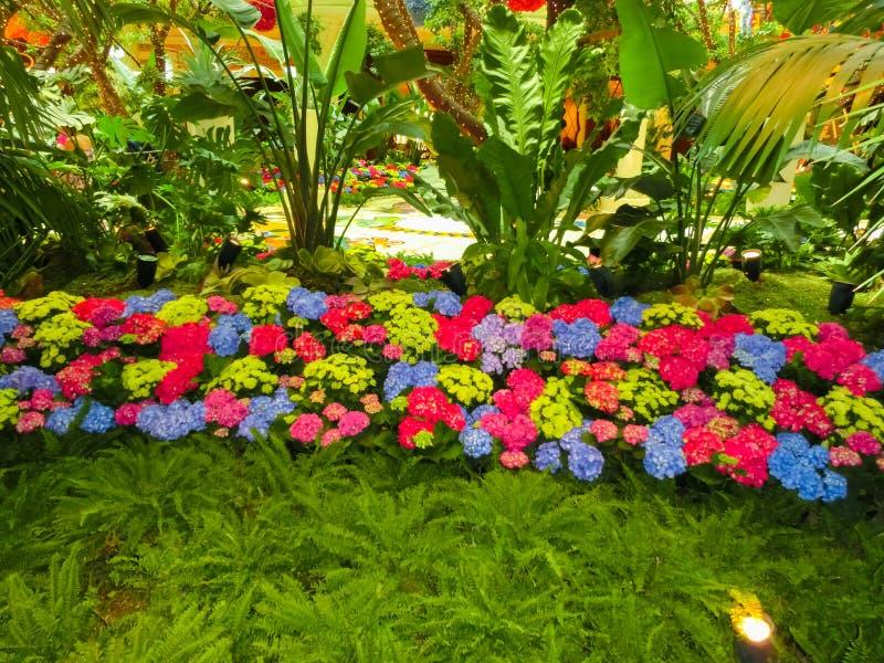 Λας Βέγκας, Ηνωμένες Πολιτείες της Αμερικής - 6 Μαΐου 2016: Εγκατάσταση λουλουδιών στο ξενοδοχείο και τη χαρτοπαικτική λέσχη Wynn στοκ εικόνες