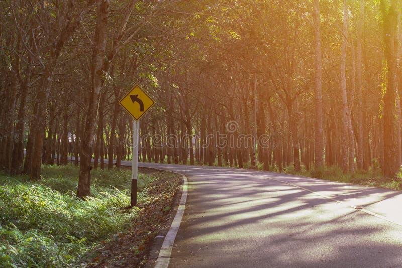 Λαστιχένια κάμψη φυτειών πρασινάδων ζουγκλών στο δρόμο με το σημάδι Τ στοκ φωτογραφία με δικαίωμα ελεύθερης χρήσης