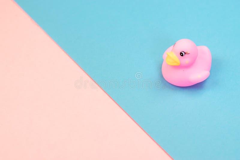 Λαστιχένια πάπια λουτρών στο ζωηρόχρωμο υπόβαθρο Τοπ άποψη σχετικά με τη λαστιχένια πάπια παιχνιδιών Παιχνίδι παιχνιδιών για duck στοκ φωτογραφίες