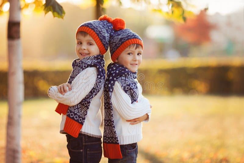 Λατρευτοί μικροί αδελφοί με τη teddy αρκούδα στο πάρκο την ημέρα φθινοπώρου στοκ φωτογραφίες