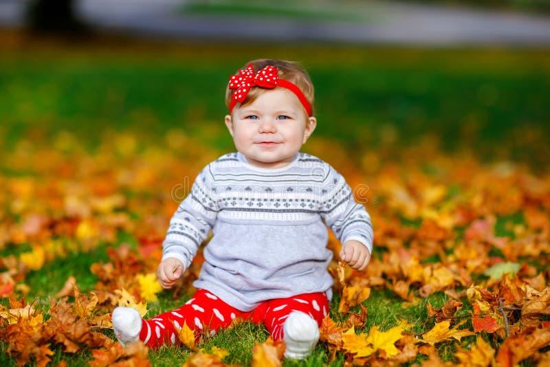 Λατρευτός λίγο κοριτσάκι στο πάρκο φθινοπώρου την ηλιόλουστη θερμή ημέρα Οκτωβρίου με τη βαλανιδιά και το φύλλο σφενδάμου ο συνδυ στοκ φωτογραφίες