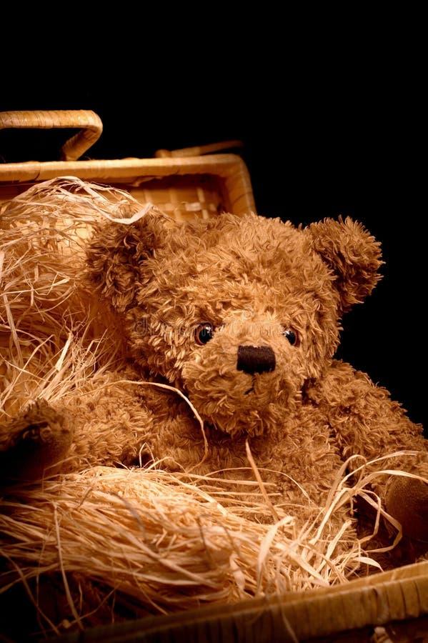 λατρευτό καλάθι teddybear στοκ εικόνες