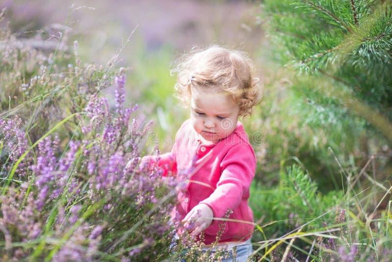 Λατρευτό κοριτσάκι με τα πορφυρά λουλούδια στο έδαφος ερείκης στοκ εικόνα