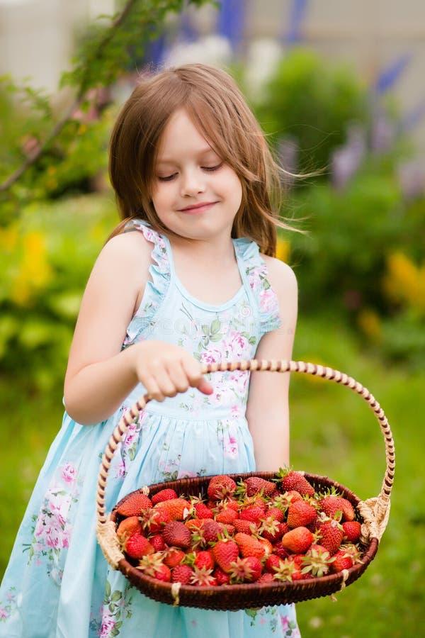 Λατρευτό μικρό κορίτσι με τη συγκομιδή φραουλών στοκ εικόνες με δικαίωμα ελεύθερης χρήσης