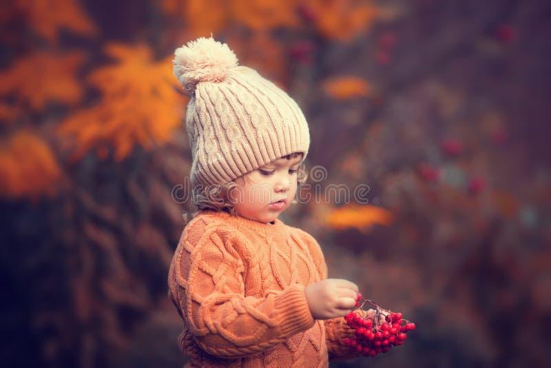 Λατρευτό πορτρέτο κοριτσιών μικρών παιδιών την όμορφη ημέρα φθινοπώρου στοκ εικόνα με δικαίωμα ελεύθερης χρήσης