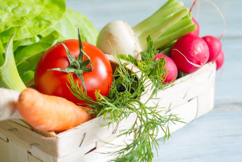 Λαχανικά άνοιξη και εργαλεία κηπουρικής στοκ εικόνες με δικαίωμα ελεύθερης χρήσης