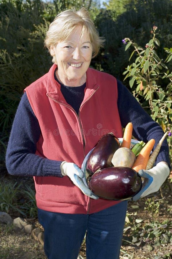 λαχανικά εκμετάλλευση&si στοκ εικόνα