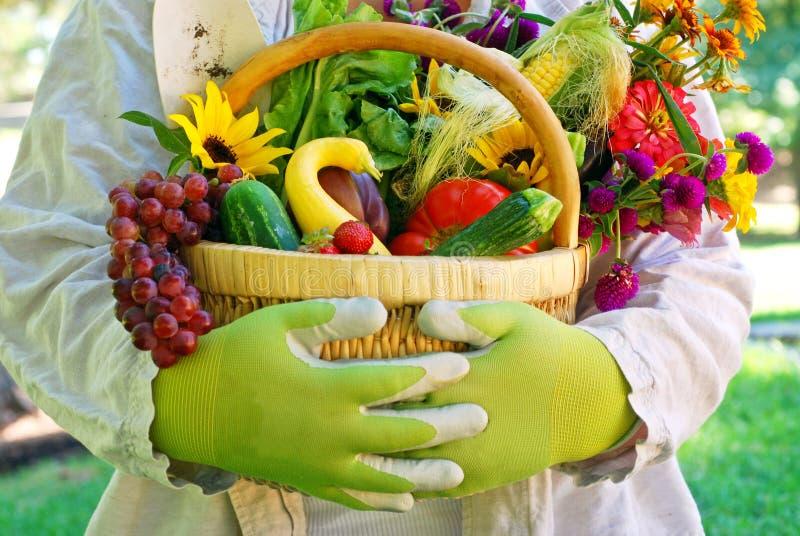 λαχανικά κήπων καλαθιών στοκ φωτογραφία με δικαίωμα ελεύθερης χρήσης